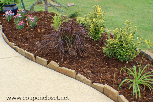lanscaping tips - how to save a lot of money
