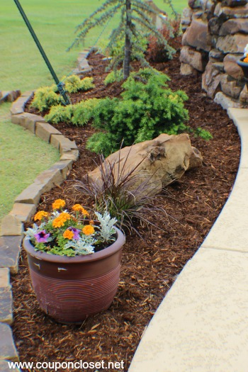 lanscaping tips to help you save thousands
