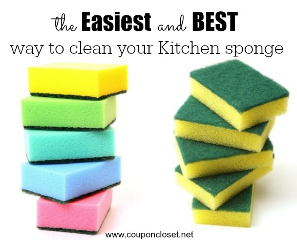 How to Clean Kitchen Sponge in one easy step - One Crazy Mom