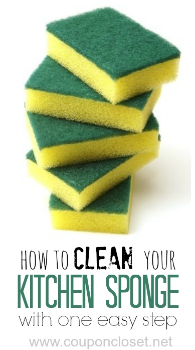 clean kitchen sponge in one easy step