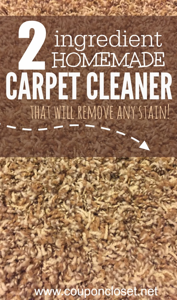 2 ingredient homemade carpet cleaner