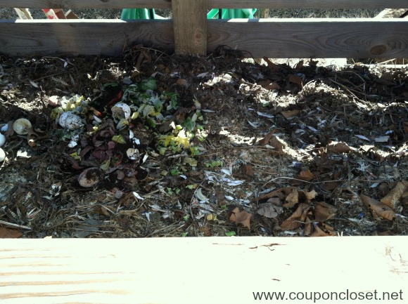 How to compost the beginners guide one crazy mom - Why you shouldnt take the trash out at night ...