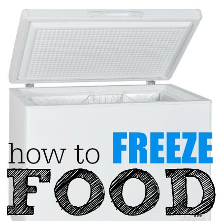 how to freeze food to save money square