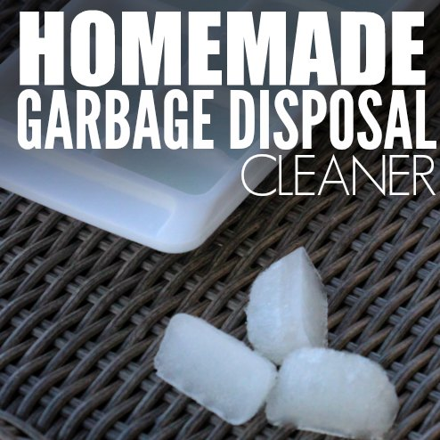 homemade garbage disposal cleaner square