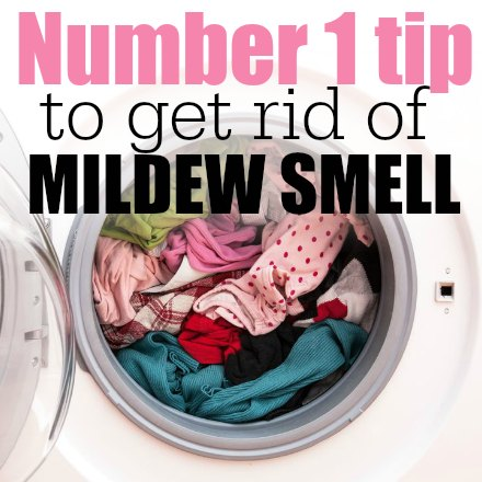 How to get rid of mildew smell. You only need one ingredient and you can easily get rid of that yucky mildew smell. It does work! Learn how to get rid of mildew smell in clothes and how to get rid of mildew smell in towels. You will be amazed at how simple, cheap and easy this tip is!