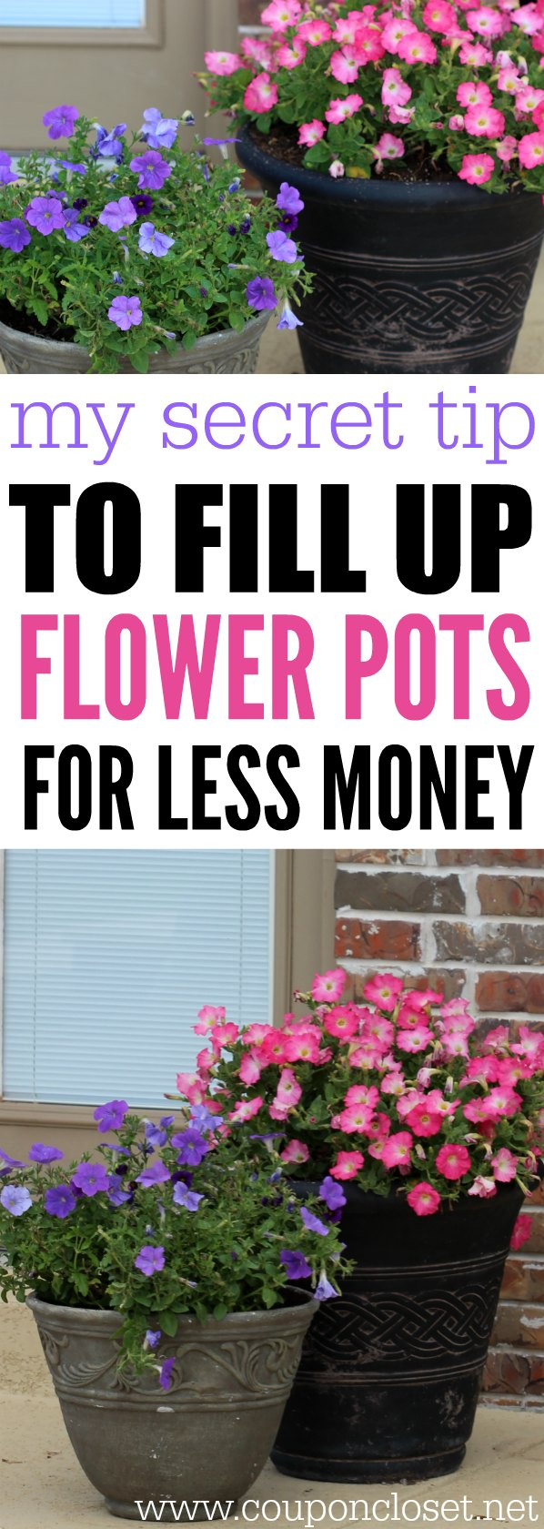 save on flowers - secret tip