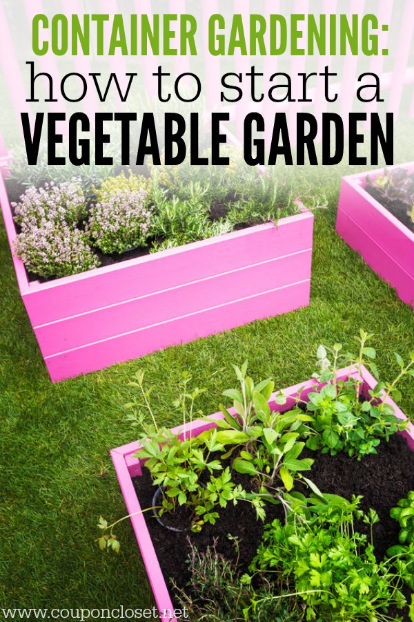 Container Gardening   How To Start A Vegetable Garden. Growing Vegetables  In Containers Is Much