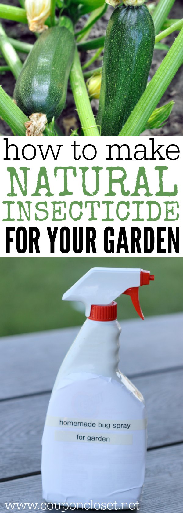 How To Make Natural Pesticides Homemade Insecticide