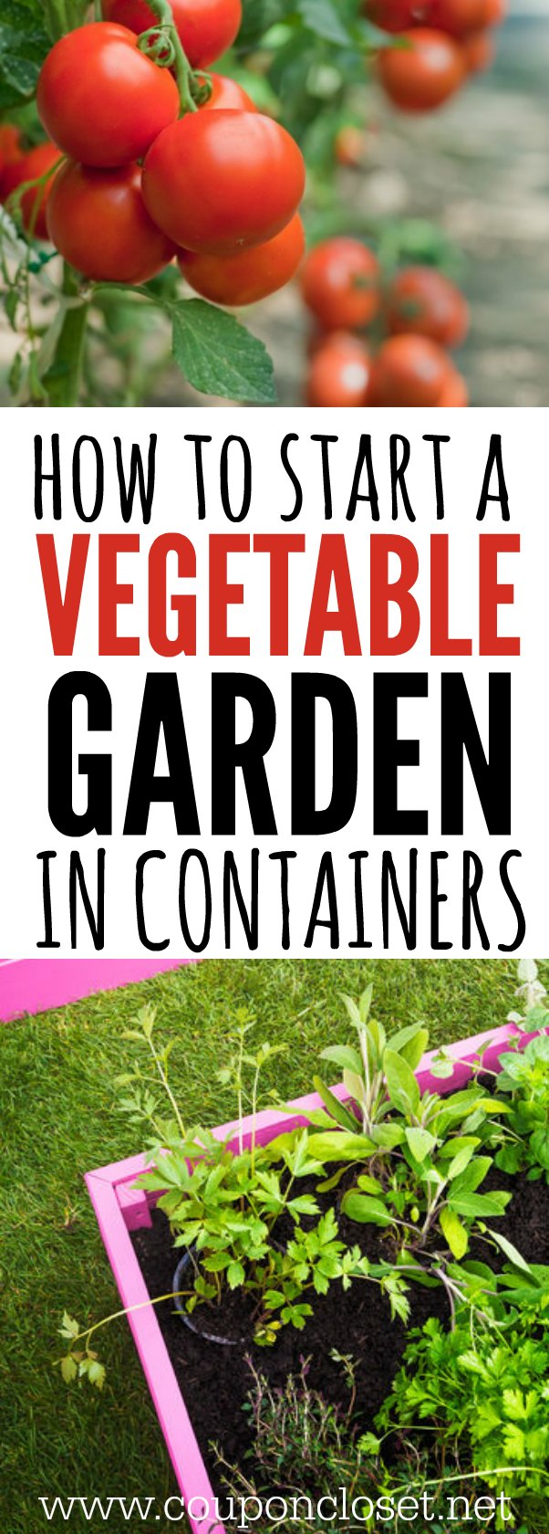 Container gardening how to start a ve able garden Growing ve ables in containers is much